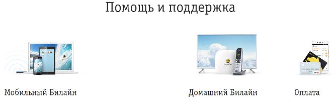 Связь со специалистом Билайн через сайт